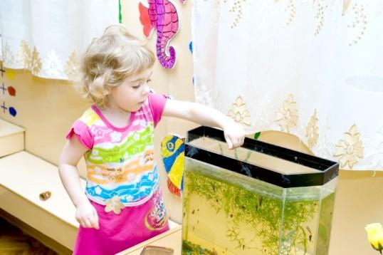 Як влаштувати дитину в дитячий сад без черги