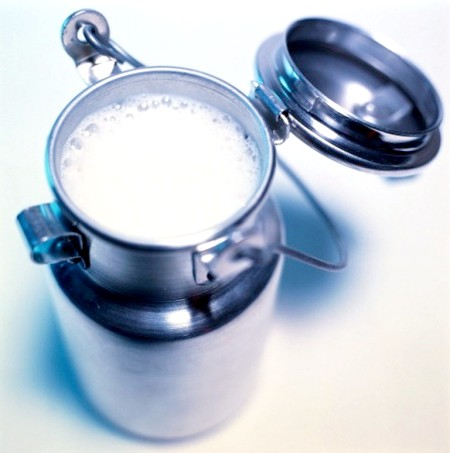 Як збільшити молоко від корів