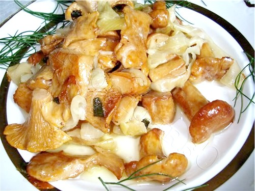 Як смажити гриби з цибулею