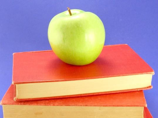 Способи швидкого читання: як навчити їм дитини
